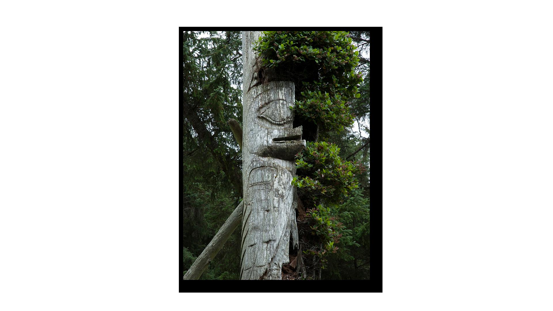 Haida 1